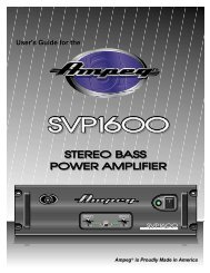 User's Guide for the - Ampeg