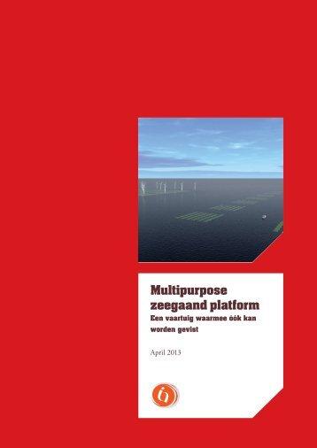 Summary: Multi purpose Seagoing Platform (2013)
