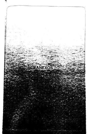 Anexo I (1.72 MB) - Cepes