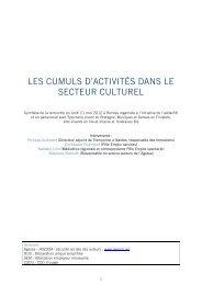 Les cumuls d'activités dans le secteur culturel - Médiathèque ...