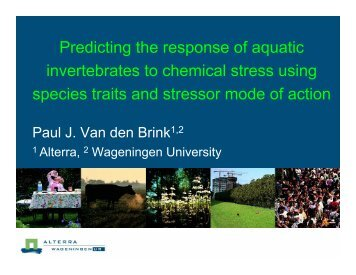 Predicting the response of aquatic invertebrates to ... - Cefic LRI