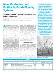 Peach Planting Systems - New York State Horticultural Society