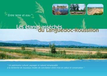 Les étanges asséchés du Languedoc-Roussillon. Janvier 2005