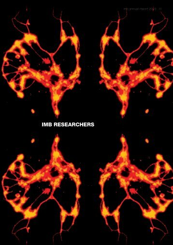 IMB RESEARCHERS - Institute for Molecular Bioscience