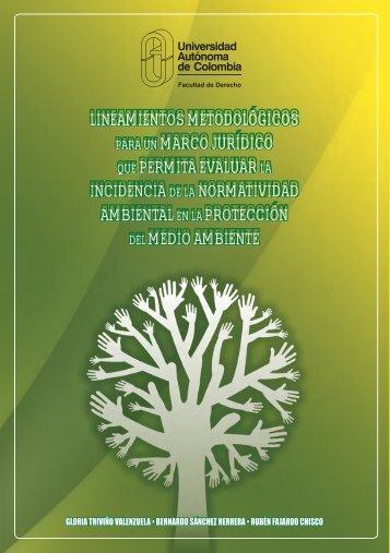 Lineamientos metodoLógicos para un marco jurídico que permita ...