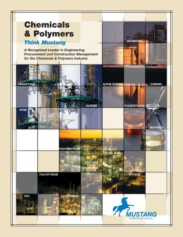 Chemicals & Polymers - Mustang Engineering Inc.