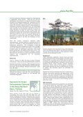 Mountain Forum - rupes - Page 5