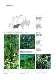 pdf-Datei 1670KB - KBNL