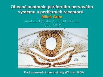 Rozší ení - Anatomický ústav 1.LF UK