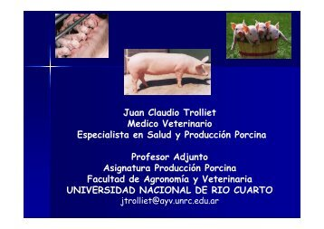 Jornadas Porcinas oct 2011 Troilliet Manejo Reproductivo. Pautas ...