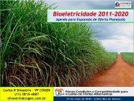 Programa Bioeletricidade 2011-2020 - Cogen