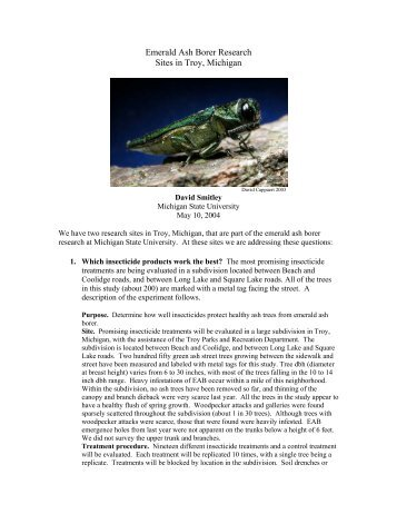 emerald ash borer research paper The emerald ash borer project by josh k winkler  and promote research, practices, and initiatives that foster the integration of economic, ecological, and social .