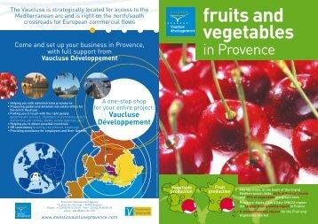 in Provence - Vaucluse Développement