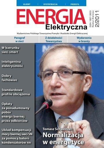 numer 2/2011 - E-elektryczna.pl