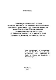 3 - Instituto Lauro de Souza Lima