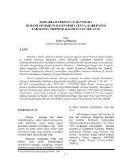 Eksplorasi Cekungan Batubara di Daerah Haruwai dan Sekitarnya
