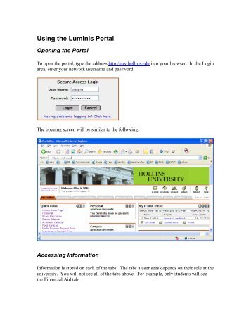 Using the Luminis Portal
