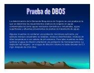 Prueba de DBO5.pdf - Cegesti