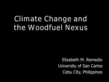 Climate Change and the Woodfuel Nexus - UNU-WIDER
