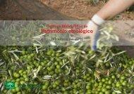 Descargar en pdf. - IAPH. Instituto Andaluz del Patrimonio Historico