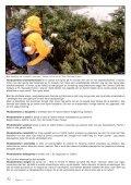 Lapprosen 1/2013 side 20 - Den norske Rhododendronforening - Page 6