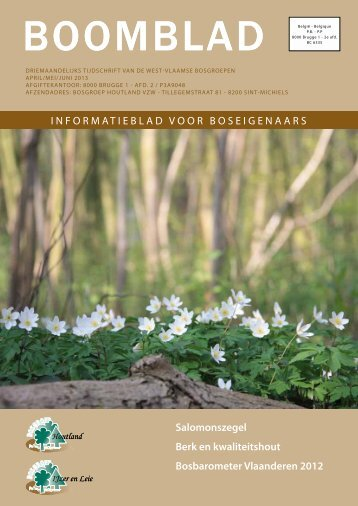 bosinfo - Brugse verenigingen