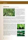 bosinfo - Brugse verenigingen - Page 6