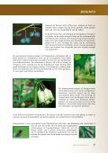 bosinfo - Brugse verenigingen - Page 7
