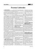 Inspecciones Laborales - AELE - Page 4