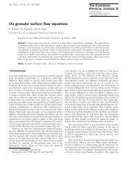 On granular surface flow equations - Springer