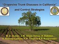 Grapevine Trunk Diseases Department of Plant ... - Lodi Wine