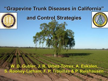 Grapevine Trunk Diseases Department of Plant ... - Lodi Wine