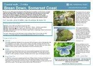 Brean Down - Zing Somerset