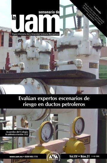 Evalúan expertos escenarios de riesgo en ductos petroleros - UAM ...