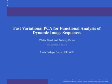 Fast Variational PCA for Functional Analysis of Dynamic Image ...