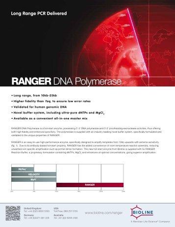 RANGER DNA Polymerase - LAB MARK