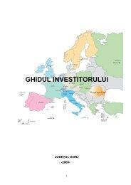 GHIDUL INVESTITORULUI - Consiliul Judeţean Gorj