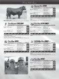 WINDY HILL ANGUS - Angus Journal - Page 7