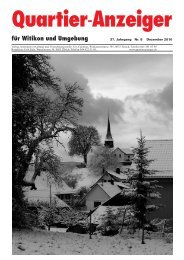 Ausgabe 8, Dezember 2010 - Quartier-Anzeiger Archiv