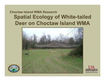 Spatial Ecology of White-tailed Deer on Choctaw Island WMA