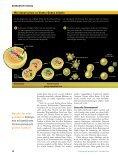2007 Chaos Chromosomen P.Duesberg spw 10.07 1 - Prostata ... - Seite 5