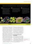 2007 Chaos Chromosomen P.Duesberg spw 10.07 1 - Prostata ... - Seite 6