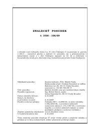 470292-posudek, 125 ex 760-08.pdf - Exekutorský úřad Český ...