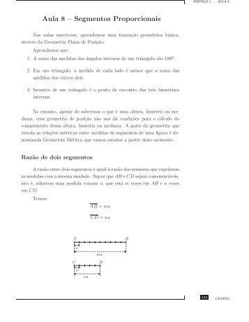 Aula 8 – Segmentos Proporcionais - Professores da UFF