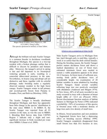 Scarlet Tanager - Michigan Breeding Bird Atlas Website