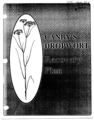 Recovery plans - Herbarium - North Carolina State University