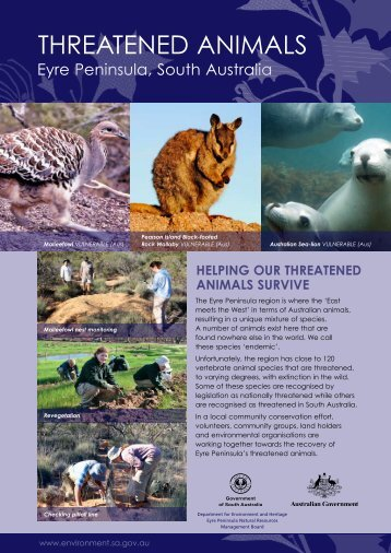 Threatended animals, Eyre Peninsula, South Australia