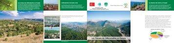 Les Travaux de l'Afforestation en Turquie