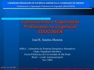 Conhecimento e Capacitação Profissional na Cogeração EDUCOGEN