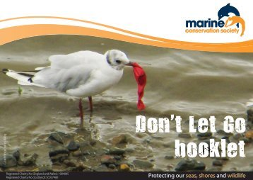 Don't Let Go booklet - Marine Conservation Society